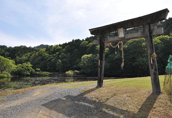 楢澤神社と池